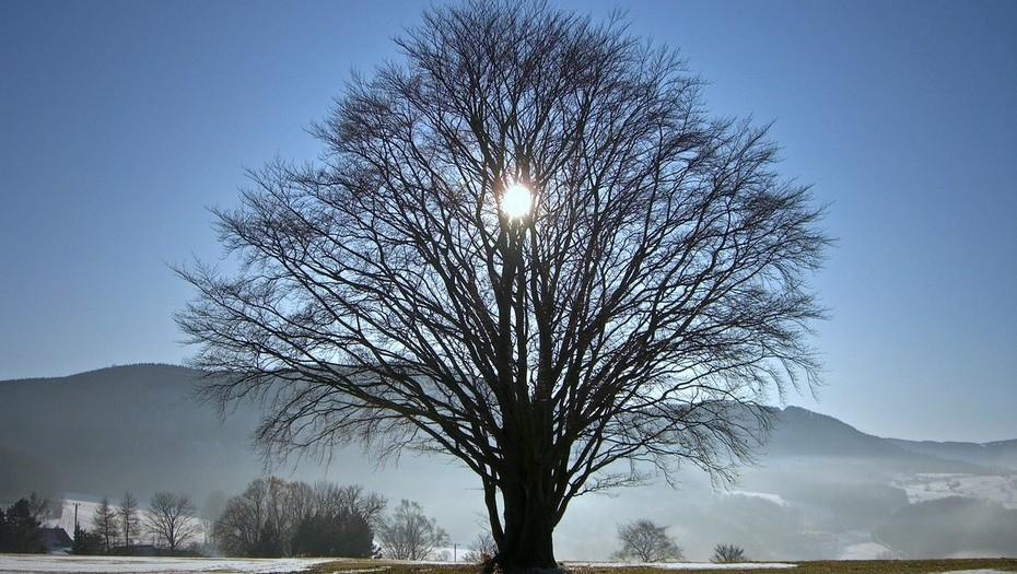 #Solsticio de invierno!