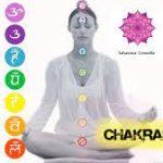 Sabes que son los chakras ??